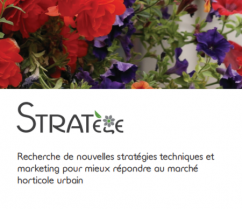 image CaptureSTRATEGE.png (0.2MB) Lien vers: https://www6.inrae.fr/umt-stratege/L-UMT-STRATege