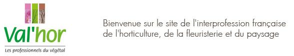 image Concours_CaptureValhorBIS.png (41.9kB) Lien vers: http://www.valhor.fr/promotion-evenements/valorisation-des-metiers/