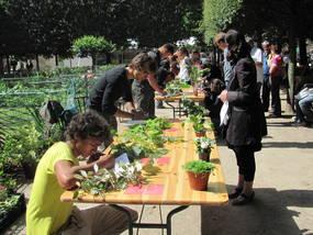image CreditVALHOR.jpg (17.5kB) Lien vers: http://www.valhor.fr/promotion-evenements/valorisation-des-metiers/reconnaissance-des-vegetaux/