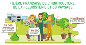 image CaptureFilireVALHOR.png (0.2MB) Lien vers: https://www.valhor.fr/etudes-statistiques/la-filiere-en-chiffres/