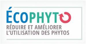 image CapturerECOPHYTOvisuel2018.jpg (26.1kB) Lien vers: https://agriculture.gouv.fr/developpement-agricole-et-rural-appels-projets