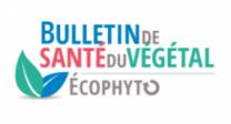 image CaptureEcophytoBSV.png (27.1kB) Lien vers: https://ecophytopic.fr/