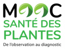 image CaptureMOOCsantePlanteSept2017.png (48.4kB) Lien vers: https://www.fun-mooc.fr/courses/course-v1:agrocampusouest+40002+session01/about