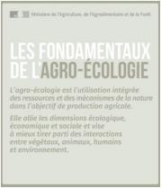 image CapturerAgroecologieBASES.jpg (27.7kB) Lien vers: http://agriculture.gouv.fr/infographie-les-fondamentaux-de-lagro-ecologie