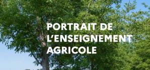 image CapturePortraitEA2021.png (0.8MB) Lien vers: https://chlorofil.fr/portrait-ea